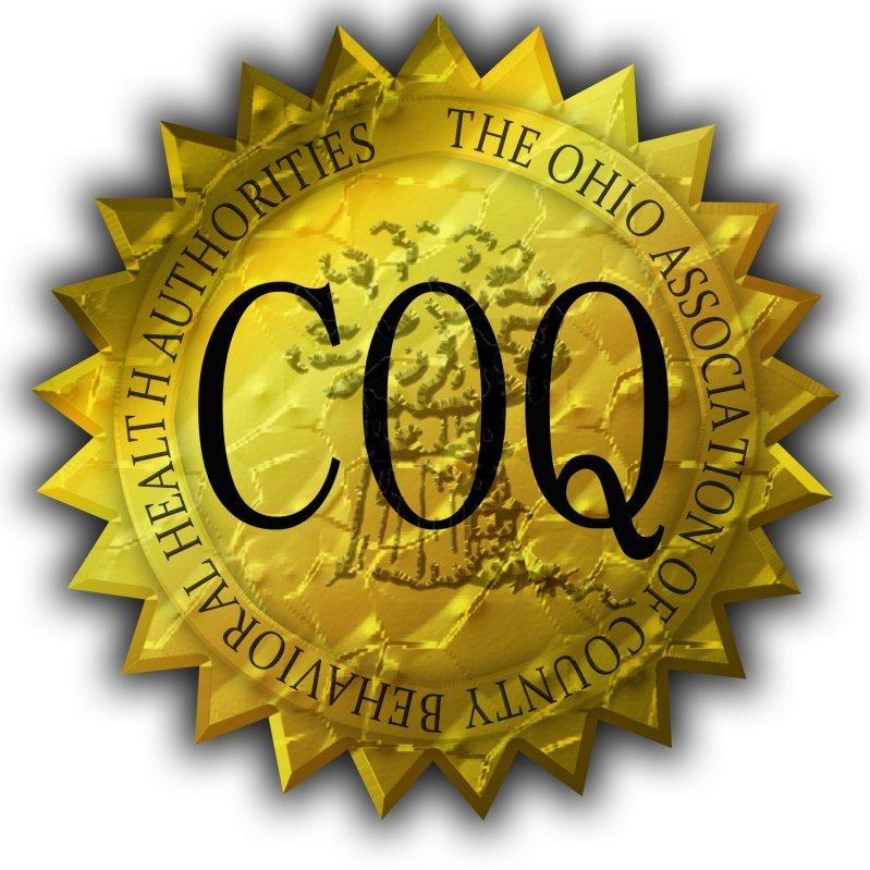 CERTIFIED Excellence seal